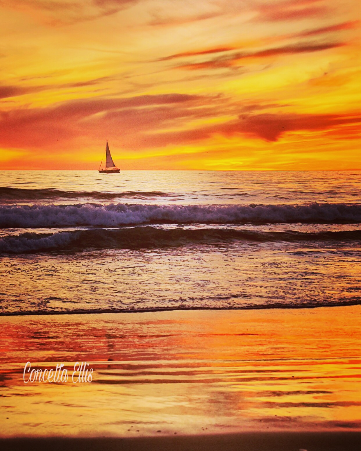 Santa Monica Orange Sunset Jan 2020 Sail