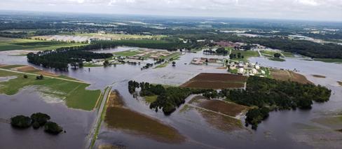 Flood image.png