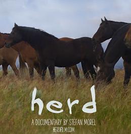 Herd.png
