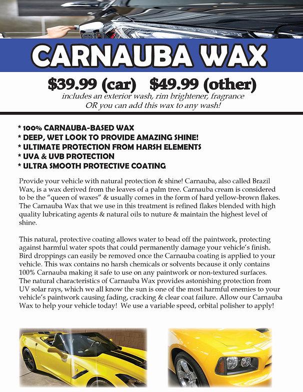 Carnauba Wax.jpg