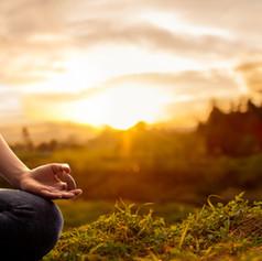 100Hr Ayurveda For Yoga Teachers
