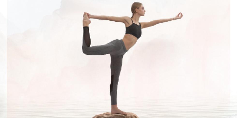 Virtual 300HR Ayurveda & Yoga Advanced Holistic Training