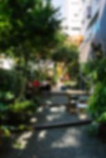 Ginkgo 788 - 094 (EDIT).jpg