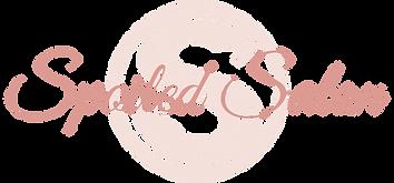 Transparent-logo1_edited.png