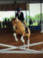 Madison Jumping.jpg