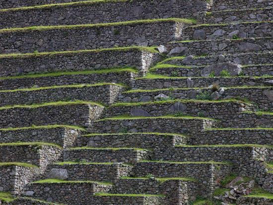 Inca terraces at Machu Picchu.jpg