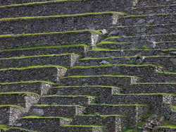 Inca terraces at Machu Picchu.jpg