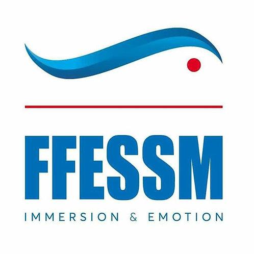 niveau 1 ffessm