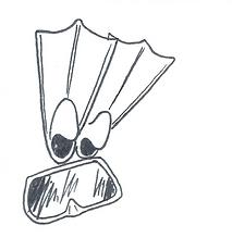 porquerolles snorkling 3.png