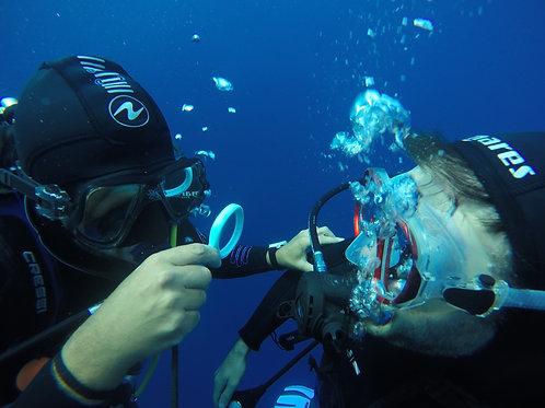 Formation de plongée / dive courses