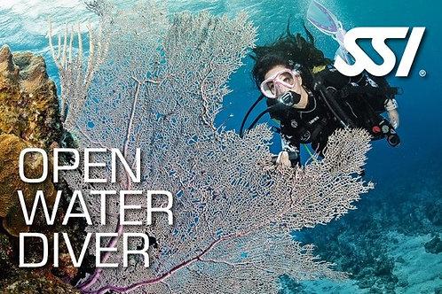 OPEN WATER DIVER+ NIVEAU 1