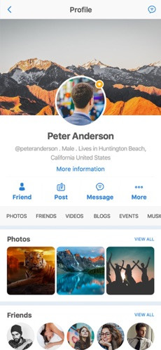 Everything You Share Will Be Nicely Organized On Your Profile Page