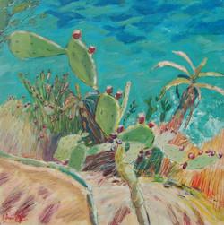 Portal Nous Cactus I