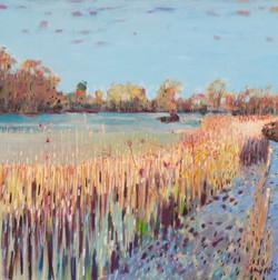 Morning Meadow, Water Newton