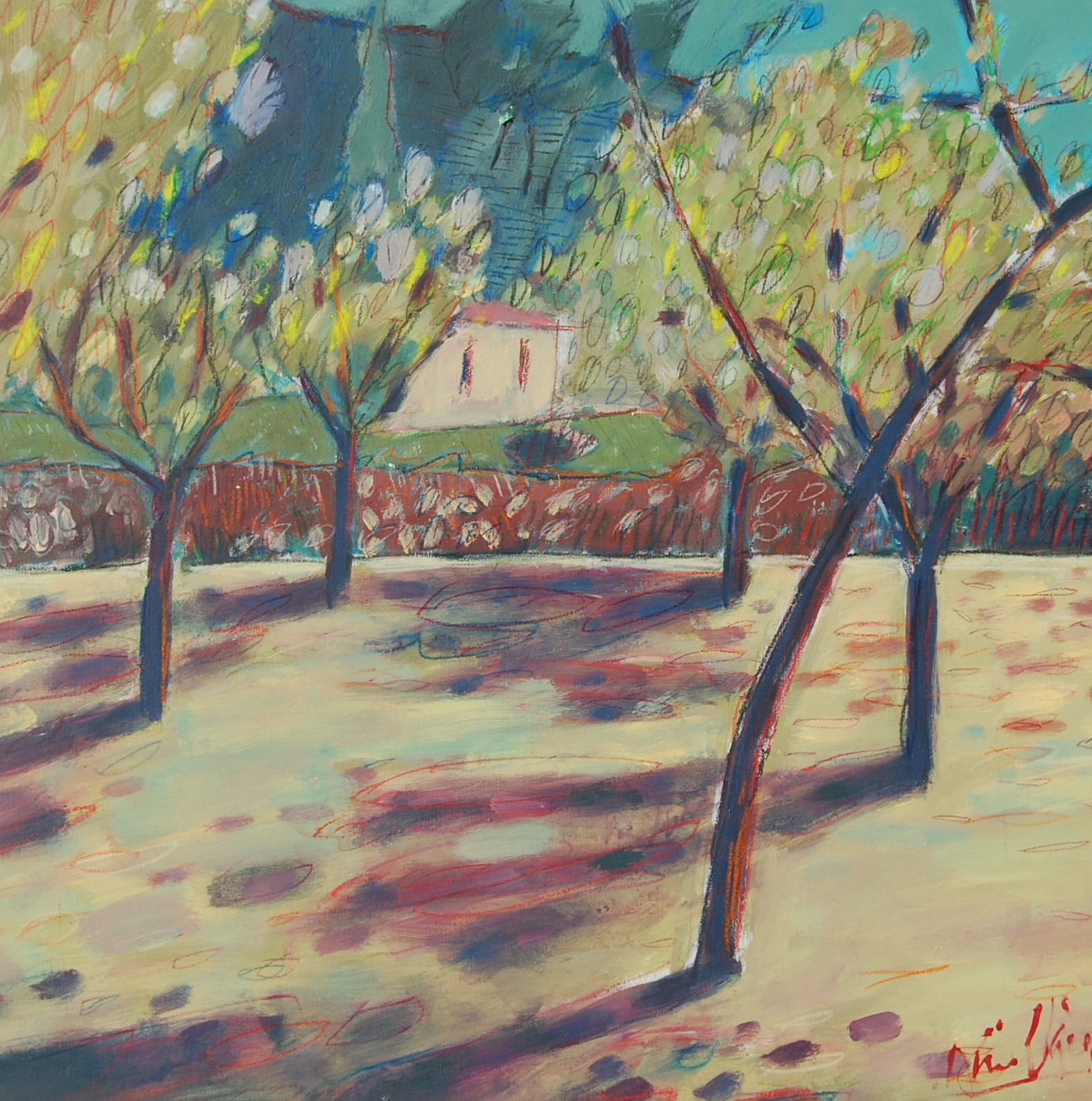 Almond Groves, Calvia