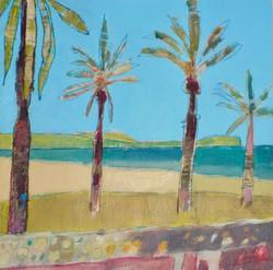 Santa Ponca Palms
