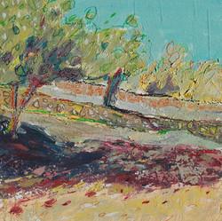Olive Groves, Calvia II