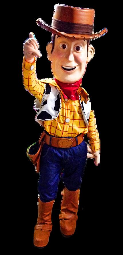 Bonecos Toy Story Flrianopolis Santa Catarina