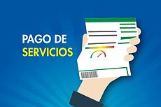 pago_servicio.png