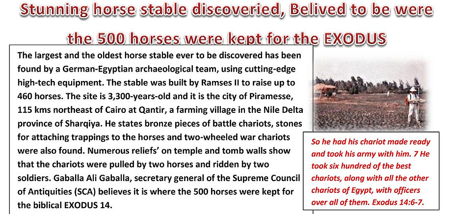 Capital city of Ramses II found.