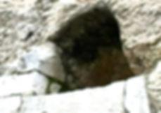 Garden tomb, nephesh,Great stone,Matthew 27 57,John 19 38,Mark 16 4,