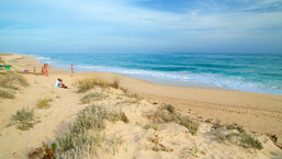 233517-Ilha-Da-Culatra-Beach.jpg