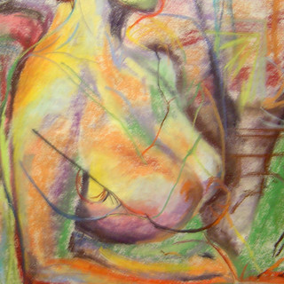 Pastel on paper  Sold