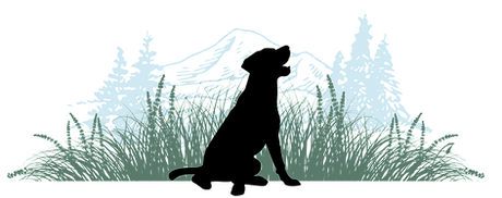 Happy Trails Logo_edited.png