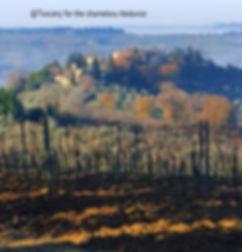 Chianti hills Tuscany