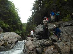 Little Dam Falls