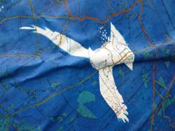 Crow Over Salisbury Plain 05