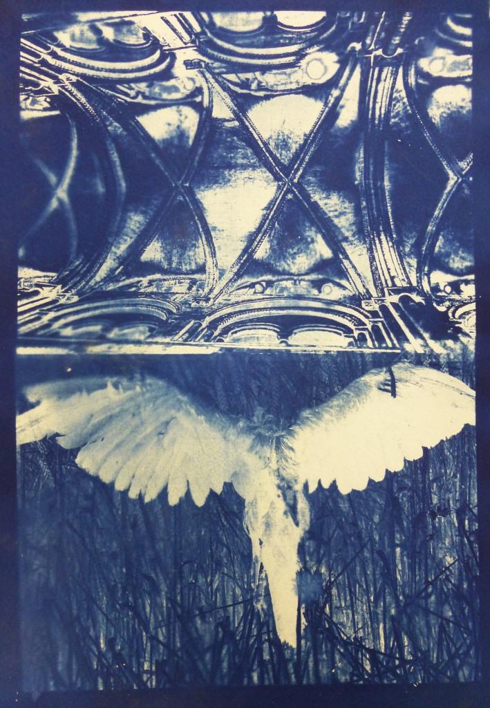 Crucified Crow