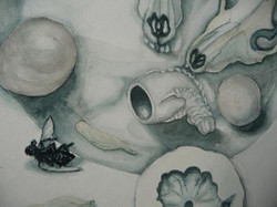skulls and fly detail