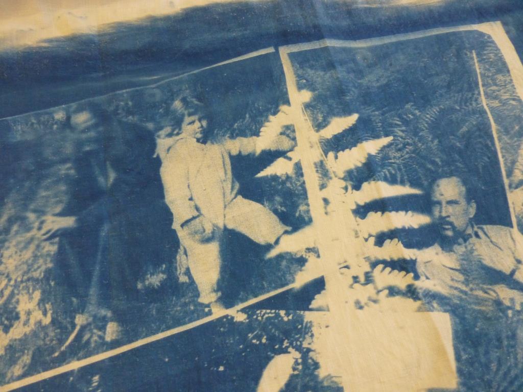 Cyanotype Album Detail 02