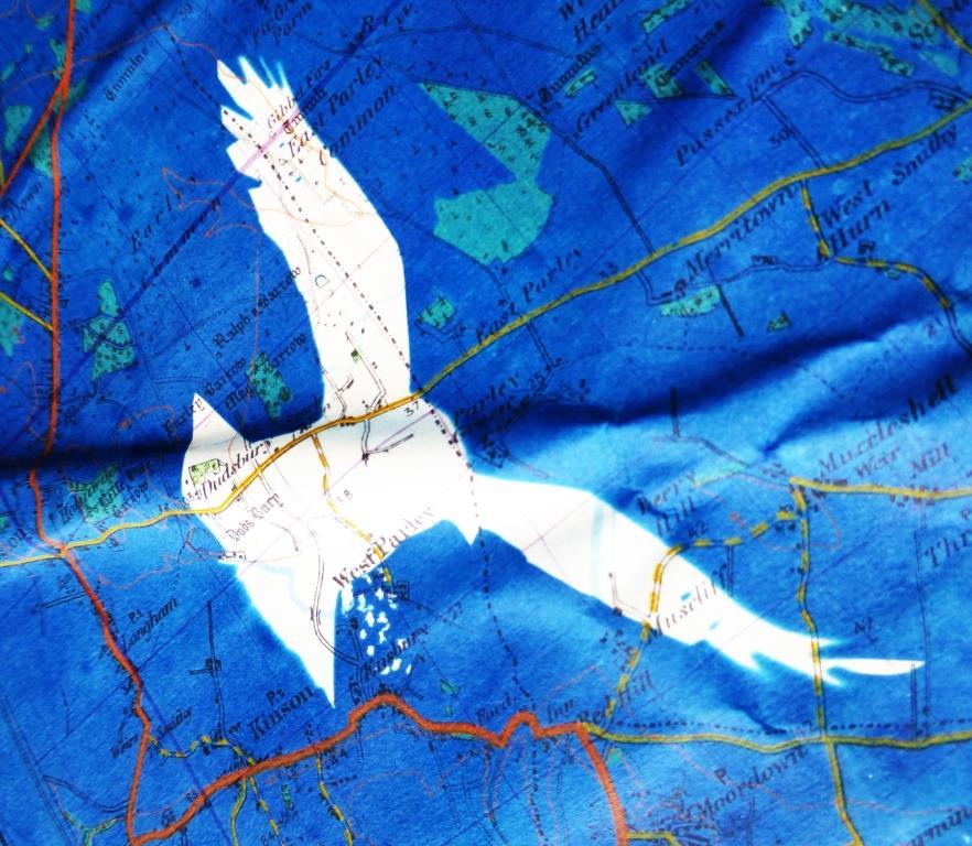 Crow Over Salisbury Plain 03