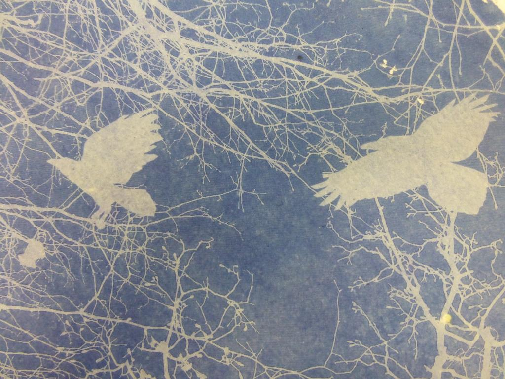 Misty Crows 02