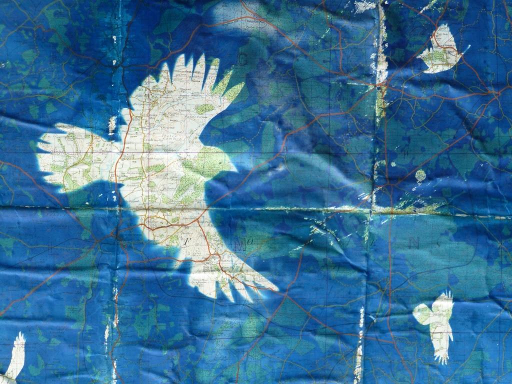 Crows Over Salisbury Map