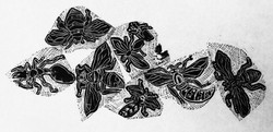 Bug Party Wood Engraving