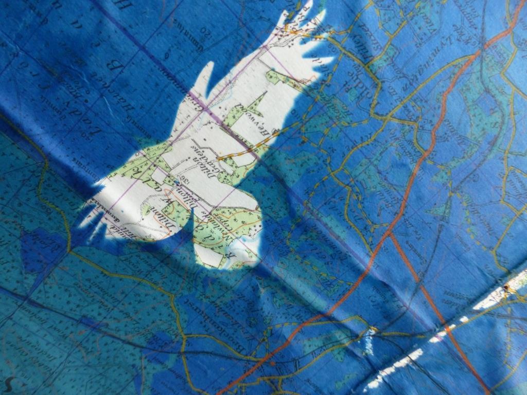 Crow Over Salisbury Plain 04