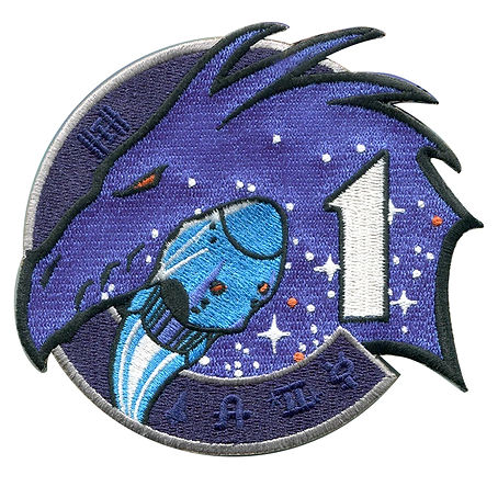 Crew-1 Mission Patch.jpg