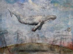 Rettet die Wale (findet Nemo)