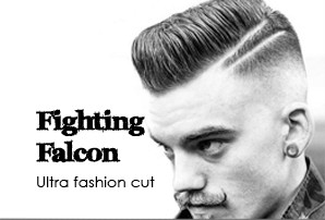 maxim_barbers_F_falcon.jpg