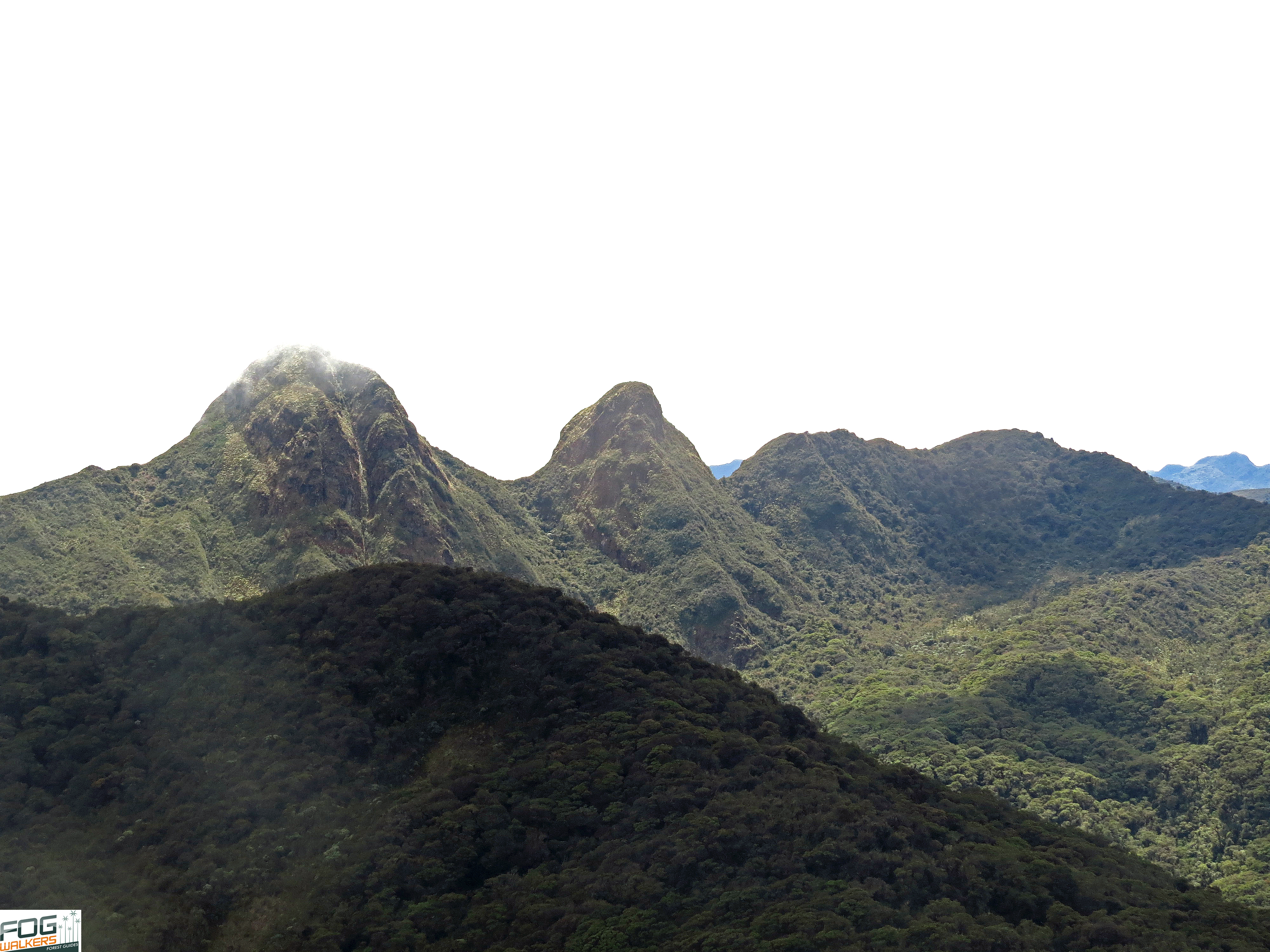 Andes Centrales Salento