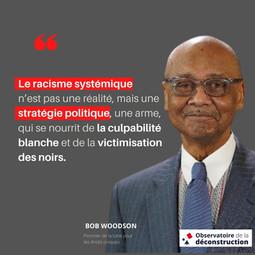 """""""Le racisme systémique n'est pas une réalité, mais une stratégie politique """""""