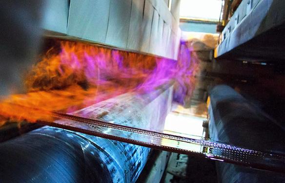 Vitro-Fresno-Plant-working-Q-1.webp