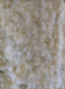 close up flowerwall.PNG