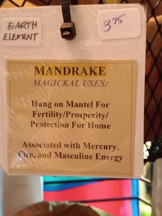 MANDRAKE dried herb in corked bottle