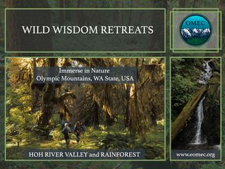 WILD WISDOM RETREAT   ​   with Rob Murphy & Lori Ferry' ​    NATURE IMMERSION
