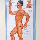 """Madison Acupuncture"", ""Madison Massage""""Acupuncture herbs"" 'Relieve pain"" ""low back pain"""