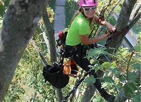 bezpečnostní vazby stromů www.stromoleze